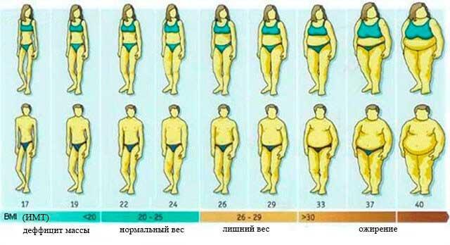 Сколько калорий нужно употреблять в день. Учимся считать свой КБЖУ